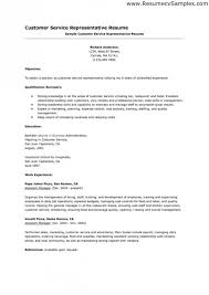 professional summary resume examplesprofessional summary examples for resumes example of resume career example of professional summary for resume