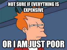 Not sure if everything is expensive Or I am just poor - Fry meme ... via Relatably.com