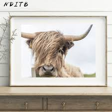 NDITB Highland Cow Wall Art <b>Canvas Painting Animal Posters</b> and ...
