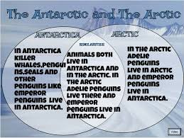 images about         arctic and antarctica on Pinterest