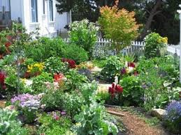 Small Picture Garden Design Garden Design with Plant Now for Spring Wildflowers