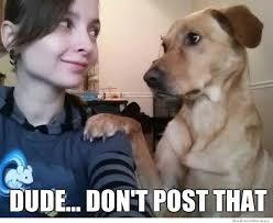 Best Of The Brutally Honest Dog – Meme   WeKnowMemes via Relatably.com