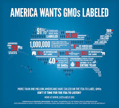 pros and cons of gm foods gmos pros and cons healthline gmo benefits