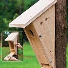 ideas about Bird House Plans on Pinterest   Birdhouses    audubon birdhouse plans   FREE HOME PLANS   PETERSON BLUE BIRD HOUSE PLANS