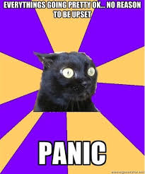 Anxiety Cat: Everything's going pretty OK... No reason to be upset ... via Relatably.com