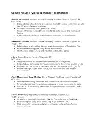 resume work experience descriptions   sample invitation letter for    resume work experience descriptions careeronestop resume guide work experience sample resume work experience descriptions research assistant