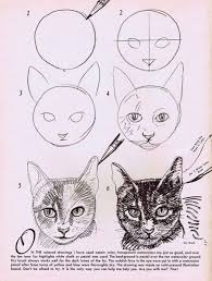 How to Draw <b>Cats</b> | Animal drawings, Drawings, Art drawings