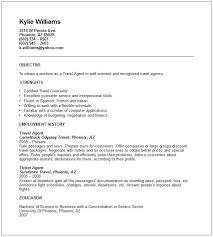 travel agent resume sample sample nurses notes for fall travel junior travel consultant resume