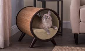 The Top 5 Places to Put <b>Cat Beds</b> - Overstock.com