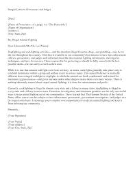 letter to judge template info best photos of formal letter to judge template good character