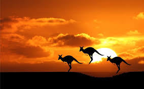 Image result for Australia photos + free