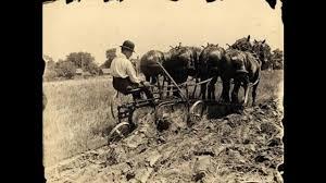 agricultural revolution related keywords agricultural revolution agricultural revolution