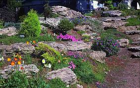 Image result for hillside rock garden