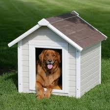 How to Build a Dog House Plans are Now Available for PDF Download