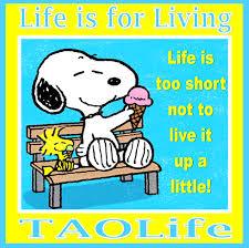 Η ζωή είναι τόσο  μικρή...