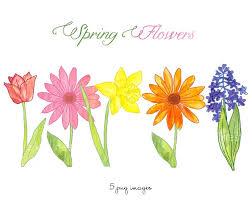 Image result for spring flower clip art images