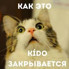 #кидосити Instagram posts (photos and videos) - Instazu.com