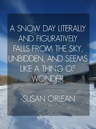 Quotes by Susan Orlean @ Like Success