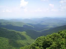 Wild Oak Trail
