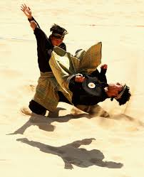Image result for image of the silat