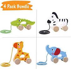 Pidoko Kids Pull Along Walking Toys - Bundle Toy Gift ... - Amazon.com