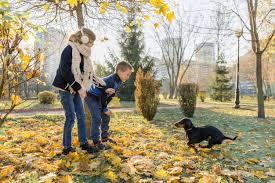 Мальчик и девочка детей играя с собакой <b>таксы</b> в солнечном ...