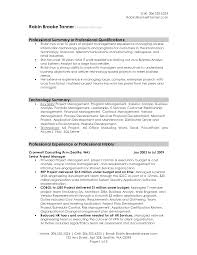 examples resume profile summary cipanewsletter cover letter summary of a resume examples functional summary of a