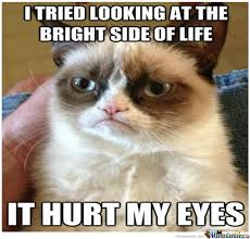 Y So Serious Cat Memes. Best Collection of Funny Y So Serious Cat ... via Relatably.com