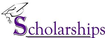 Image result for scholarship for development