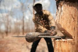 Про стан досудового розслідування в кримінальних провадженнях щодо незаконної порубки лісу та процесуальне керівництво в зазначених провадженнях
