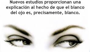 El blanco de tu mirada