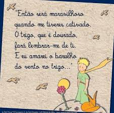 """O Pequeno Príncipe on Twitter: """"Boa noite Amigos! 💙💙💙 #quotes ..."""