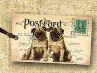 44 лучших изображений доски «post card»   Декупаж, Винтаж ...