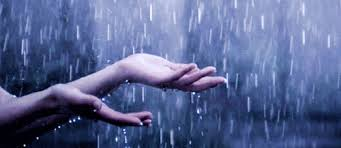 Image result for images of rain photos