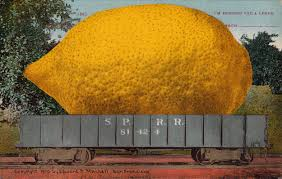 exaggeration postcard roundup giant lemon