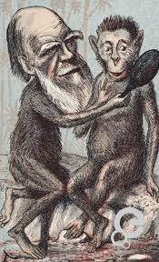Charles Darwin How was the theory of evolution put together by ...