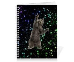 <b>Подушка</b> 60×<b>40 см</b> с полной запечаткой Кот в космосе #3268753 ...