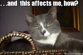 Meme Creator - indifferent cat Meme Generator at MemeCreator.org! via Relatably.com