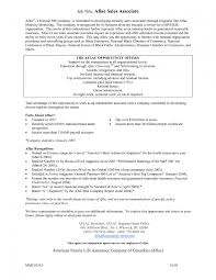 retail associate responsibilities resume cipanewsletter retail associate responsibilities resume resume description for