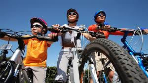 Image result for family mountain bikes