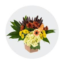 Flowers & Floral Arrangements - Kroger
