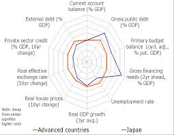 Country Report  Japan Research Paper   the effrwxst allru biz