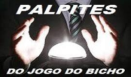 JBACERTO - RESULTADOS e PREVISÕES - PB, PE e RJ