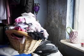 Damp and mould in rented homes - Shelter England