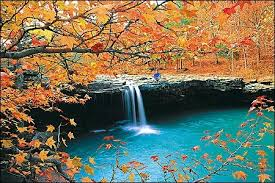 Image result for image of fall