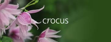 CROCUS Discount Codes Jun 2021 → 25% OFF   Net Voucher Codes