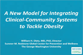 case study on childhood obesity designing an agent based model case study on childhood obesity best personal essays of
