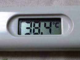 「熱」の画像検索結果