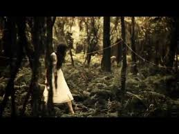 <b>The Paper Kites</b> - Bloom (Official Music Video) - YouTube