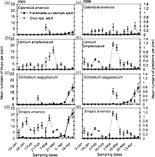 Infestation levels of adult Frankliniella occidentalis and Orius spp ...